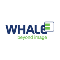 whale ultrasound machines for sale